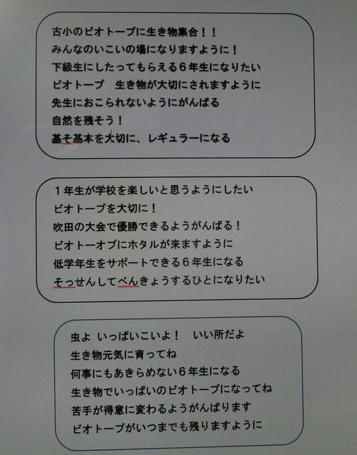 CIMG4450 (2).JPG
